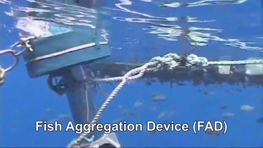 how to make floating device for fish