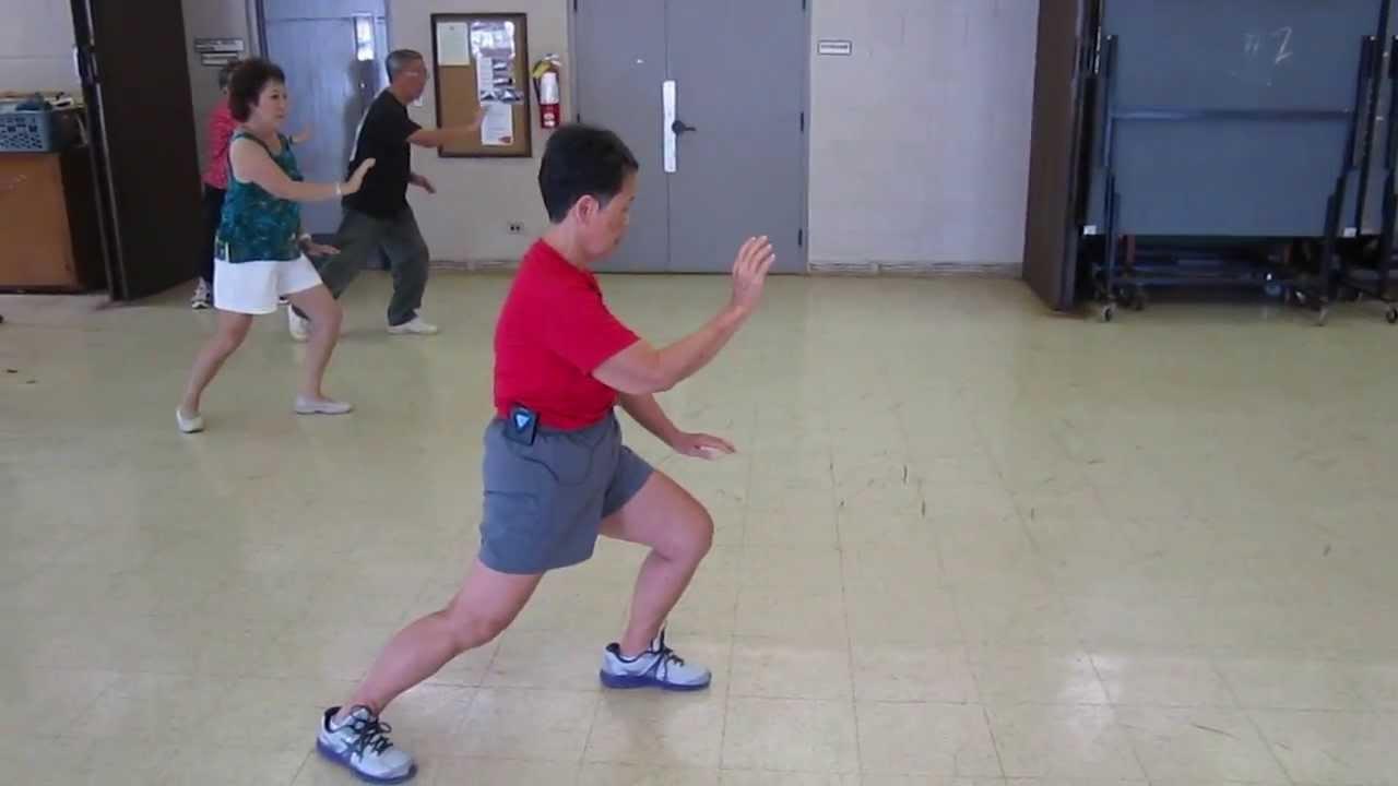 Yang Style Tai Chi 24 Short Form Brush Knee everydaytaichi lucy ...