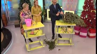 Уход за елкой(Не раз уже говорили, что комнатные растения зимой переживают не лучшие времена. Что уж говорить о новогодне..., 2013-12-25T01:23:50.000Z)