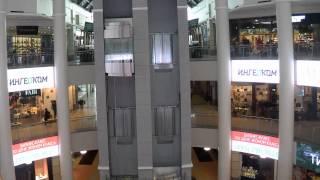 видео Главное здание ГМИИ им. А.С. Пушкина, Волхонка 12