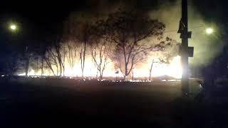 Fogo devasta reserva ambiental no Jardim Embaré