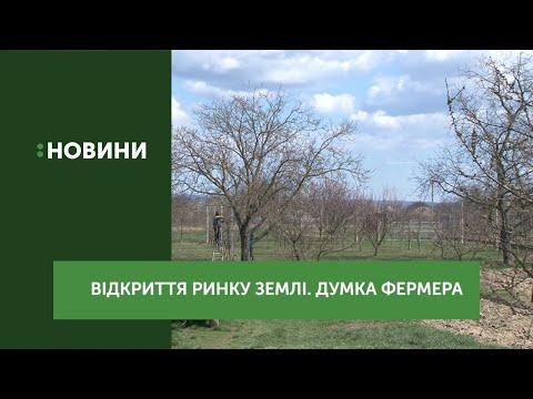 Відкриття ринку землі. Думка фермера