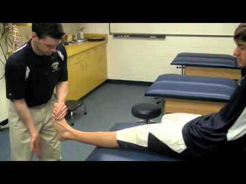 Bump Test For Leg Stress Fractures