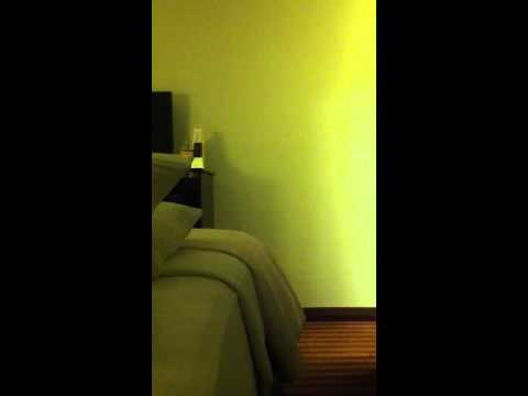 Sexy sound waves bed hitting wall