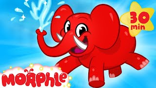 my pet elephant learn how to clean with my magic pet morphle animal videos for kids