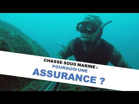 Quelle assurance choisir pour la chasse sous marine ?