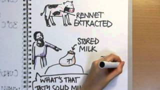 How is cheese made? - Naked Science Scrapbook