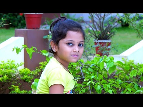 Ammuvinte Amma l Anupama get ready for legal actions against Ammu ...! l Mazhavil Manorama