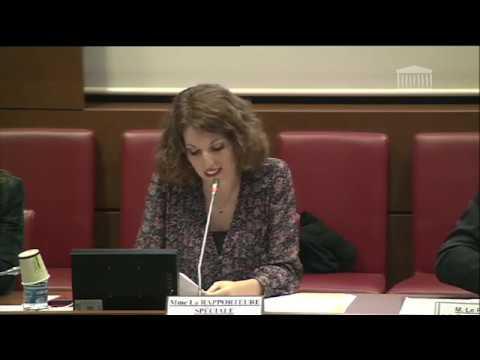 Rapport Special Media Livre Industries Culturelles PLF 2020 CF