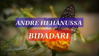 Download lagu Andre hehanussa - Bidadari |Lyrics