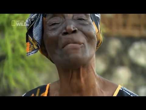 National Geographic Wild HD ● Beautiful Islands Zanzibar ● Nature History Documentary