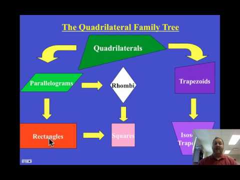 M1.24 - Quad Family Tree Part 2 - YouTube