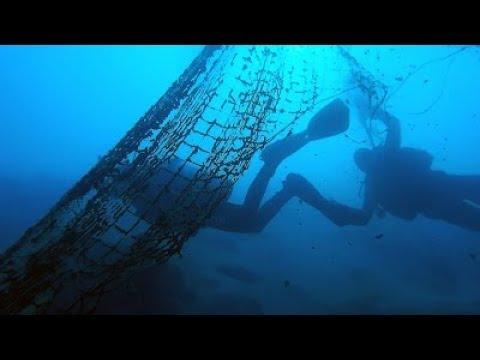 Подводная охота,на какой глубине вы охотитесь все равно при разумном подходе