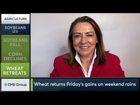April 12 Grains Commentary: Virginia McGathey