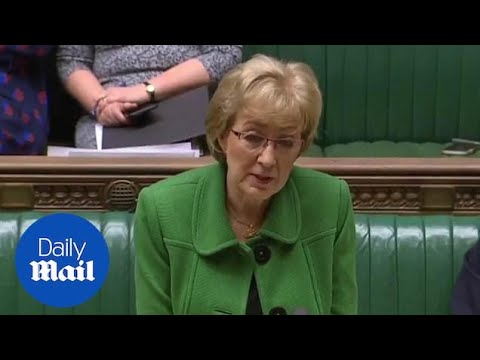 Andrea Leadsom says Islamophobia is matter for Foreign Office
