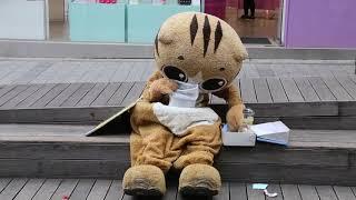 JHKTV] 신촌 명물고양이 선물에 약해 shin chon special cat  Weak in gifts