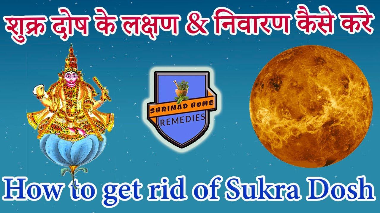 शुक्र दोष के लक्षण & निवारण कैसे करे? उपाय : औषधि स्नान, दान, मंत्र ll How to get rid of Sukra Dosh