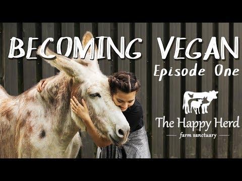 Becoming Vegan | Episode One : The Happy Herd