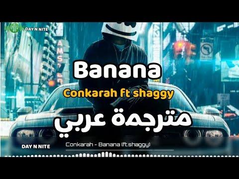 اغاني shaggy