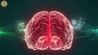 মস্তিষ্কের অসাধারণ শক্তি || Amazing Power of your Brain || Mind Power