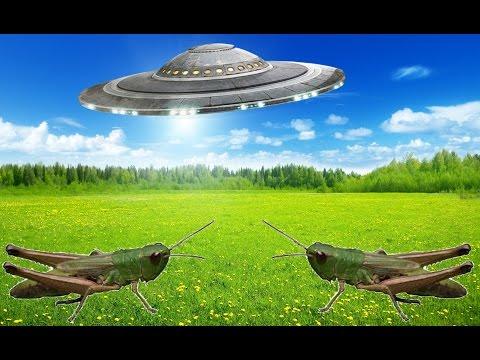 Prawdziwi Kosmici uchwyceni na taśmach filmowych from YouTube · Duration:  9 minutes 41 seconds