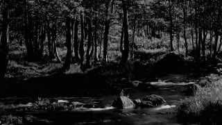Neo Noir - Hunting Season (Nargaroth Cover)