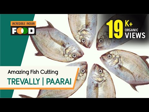 Malabar trevally | Paarai Meen | Amazing fish cutting | Chennai | Kasimedu