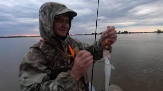 Рыбалка на судака на реке Белый Ильмень