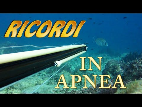 Video Di Pesca In Apnea Inediti....ricordi Indelebili! Spearfishing Memories During Covid19