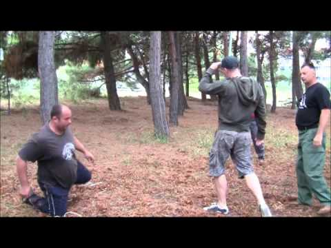 Blows.Liberation.Throws.Systema-Russian Martial Art-Hand to Hand Combat.A.Solovyev