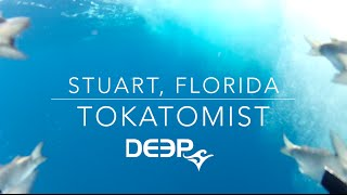 GoPro: Tokatomist in the Ocean