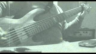 Fear Factory - Acres of Skin BASS COVER