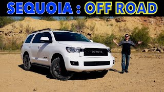 2020 Toyota Sequoia | Lightly Refreshed