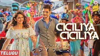 Telugutimes.net Ciciliya Ciciliya (Telugu) - Spyder