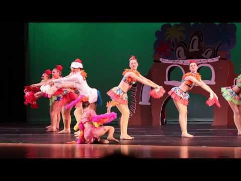 Seuss - Bay Valley Academy Recital  Performance 2016