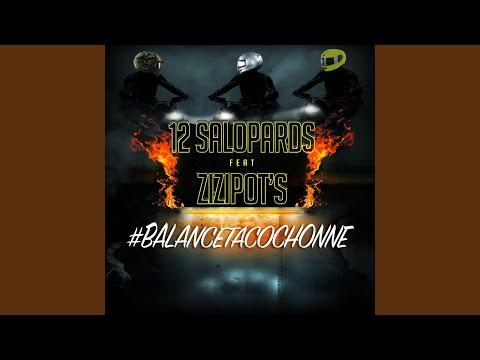 #Balancetacochonne (feat. Les Zizipot's)