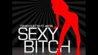 David Guetta ft. Akon - Sexy Bitch Bass Boosted