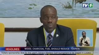 Sub-Saharan Africa: Regional exchange on wood fuel policies