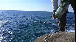 石鯛釣り#8内之浦 thumbnail