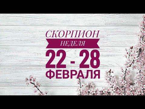 СКОРПИОН.  КАКОЙ БУДЕТ ВАША НЕДЕЛЯ С 22 ПО 28 ФЕВРАЛЯ.