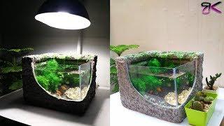 Low cost beautiful aquascape w…