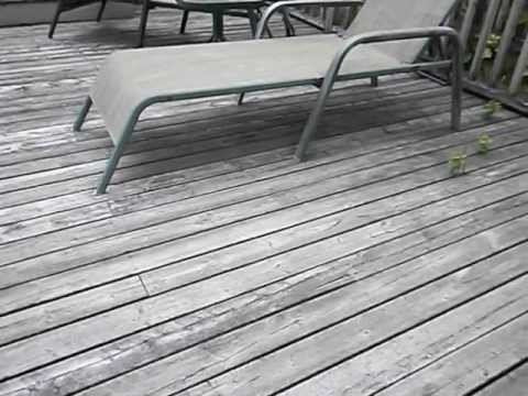 how to clean deck before restaining