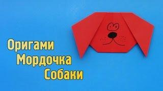 Как сделать мордочку собаки из бумаги своими руками (Оригами для детей)