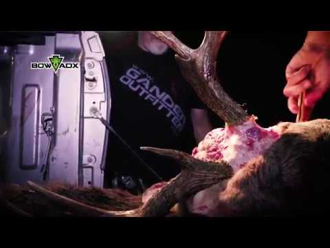 BOWADX Missouri Whitetail Bow Hunt 2017