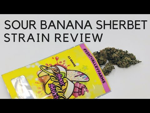 Sour Banana Sherbet Cannabis Strain Review & Information