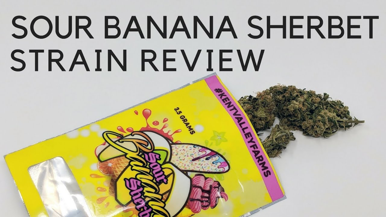 Sour Banana Sherbet Strain Review