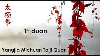 1° duan du Yangjia Michuan Taiji Quan