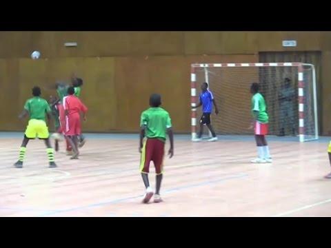 Niger, Ouverture de la Saison sportive 2017 de la Fédération nigérienne de Handball