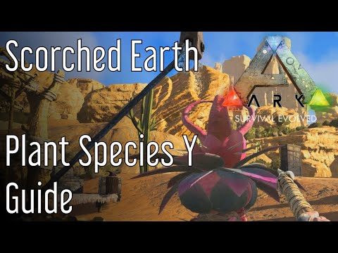 Plant Species Y Guide Ark: Scorched Earth