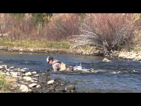 Matt Heron Reels In A Gigantic Brown Trout